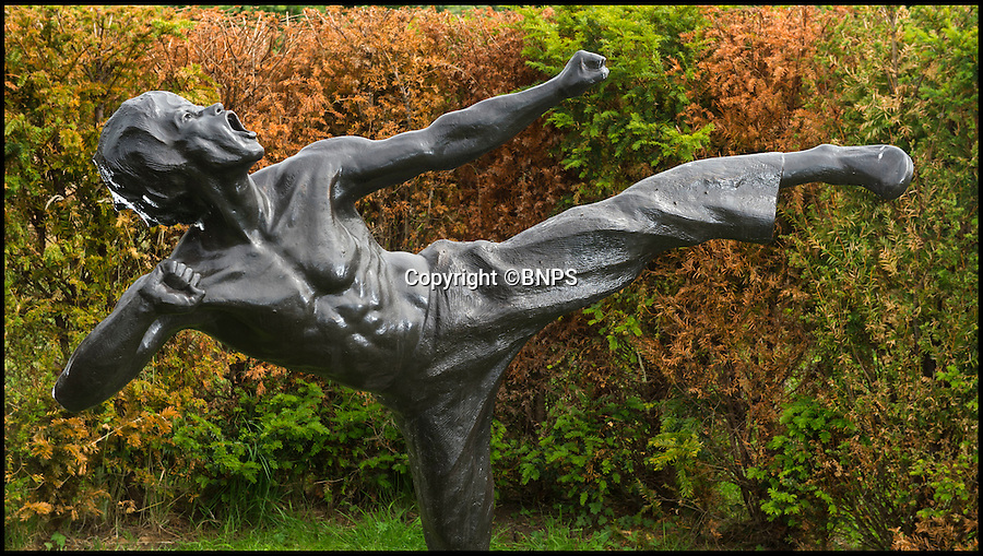 BNPS.co.uk (01202 558833)<br /> Pic: PhilYeomans/BNPS<br /> <br /> Kung Fu king Bruce Lee.<br /> <br /> The private forest owned by a late eccentric billionaire who left £500 million to the woodland is to open to the public revealing an amazing collection inside.<br /> <br /> Felix Dennis spent more than 25 years creating the secret garden and commissioned magnificent bronze sculptures of history's 'heroes and villains' at an average cost of £100,000 each to go in it.
