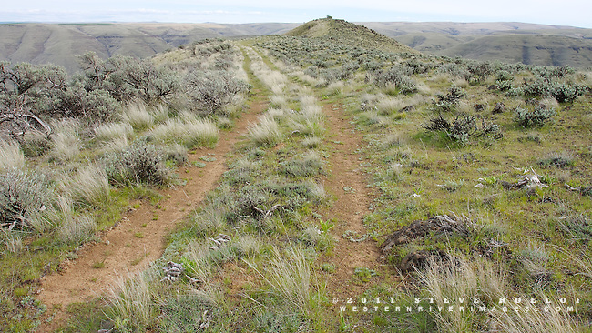 An old two-track on a ridge above the Lower John Day Canyon.