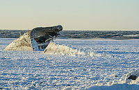 The Delaware Bay is frozen around the SS Atlantus sunken ship Friday, January 05, 2018 in Cape May Point, New Jersey. (Photo by William Thomas Cain/Cain Images)