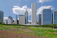 The Lurie Garden occupies the Southeast corner of Millenium Park while the top of the Pritzker Pavillion and the Chicago skyline is seen in the distance, Chicago, Illlinois