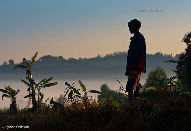 A teen boy gazes at  the sunrise while pausing between cutting brush.