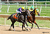Our Laughing Lady winning at Delaware Park on 8/25/14