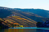 douro river and steep vineyards view from pinhao quinta do seixo sandeman douro portugal