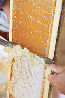 Honey extraction