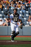 West Virginia Black Bears catcher Elys Escobar (3) during a NY-Penn League game against the Batavia Muckdogs on August 29, 2019 at Monongalia County Ballpark in Morgantown, New York.  West Virginia defeated Batavia 5-4 in ten innings.  (Mike Janes/Four Seam Images)