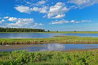 Marine estuary<br /> Saint-Edouard-de-Kent<br /> New Brunswick<br /> Canada