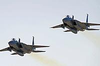 14 February, 2010, Daytona Beach, Florida USA USA.Pre-race flyby..©F. Peirce Williams 2010 USA.
