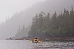 Alaska, Prince William Sound, Esther Passage, sea kayaking, salmon jumping, David Fox, released,.