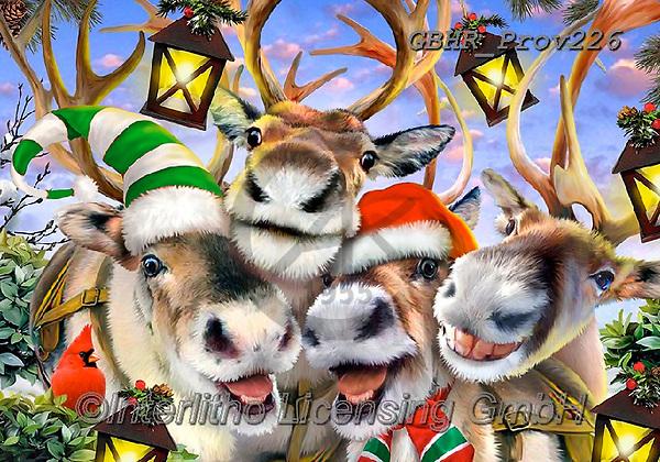 Howard, CHRISTMAS ANIMALS, WEIHNACHTEN TIERE, NAVIDAD ANIMALES,selfies, paintings+++++,GBHRPROV226,#xa#