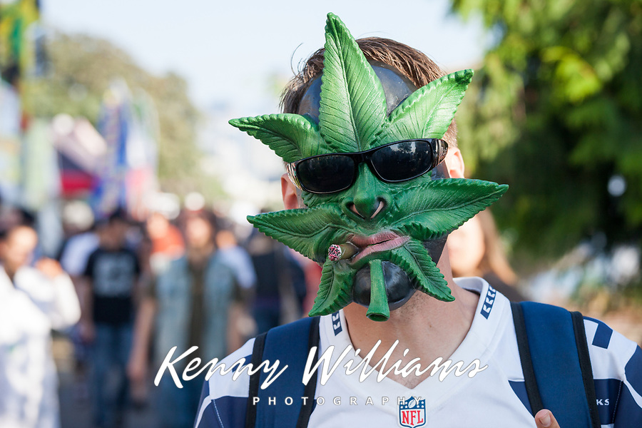 Hempfest Seattle, Washington, USA.