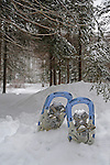 Pair of Snowshoes by a Snowy Snowshoe Trail in New Hampshire