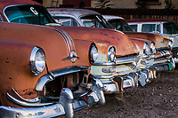 A row of antique cars with staring headlight eyes and  grinning chrome grills and bumpers.