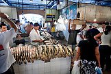 BRAZIL, Manaus Fish market, buying and selling fish