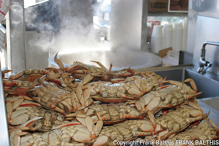 Steamed crabs in San Francisco