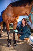 180810 SWVS Equine Technician Ariana Rose Kahu