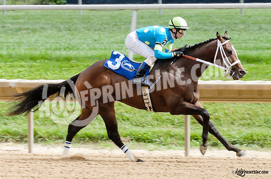 Debt Ceiling winning The First State Dash at Delaware Park on 9/14/13
