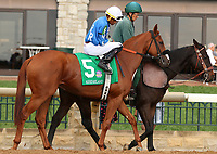 "October 07, 2018 : #5 Reward the Miracle and jockey Jarred Journet in the 1st running of The Indian Summer $200,000 ""Win and You're In Breeders' CupJuvenile Turf Sprint Division"" for trainer Mark Casse and owner John Oxley  at Keeneland Race Course on October 07, 2018 in Lexington, KY.  Candice Chavez/ESW/CSM"