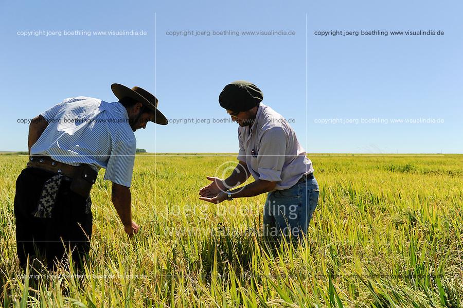 URUGUAY Estancia La Magdalena near Salto, rice farming / Reis Anbau