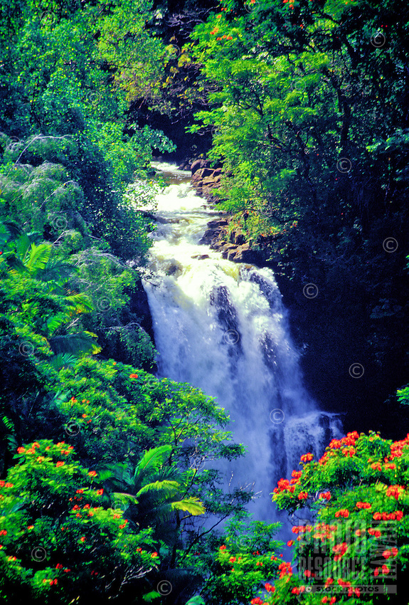 Lovely falls above Hilo on the northeast coast