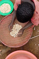 Empowering Victims of War- A young girl sorts beans. Canaan Family Farm lends land to displaced people from the Northern conflict to have them learn the benefits of work and empowerment. Rwakayata, Masindi, Uganda, Africa. December 2005 © Stephen Blake Farrington