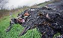 FH : Cobblebrae Farm Clean Up