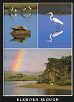 FB 335  Elkhorn Slough, 5x7 postcard
