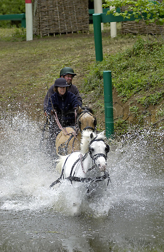 14 May 2005: British driver Audrey Budge makes her way through the water during the Pony Tandem carriage driving event at the Royal Windsor Horse Trials Photo: Martin Cushen/actionplus...equestrian 050514 team teamwork control