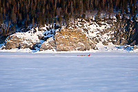Aerial of Jason Barron on the sea ice three miles after leaving the Elim checkpoint during the 2010 Iditarod