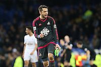 Lukasz Fabianski celebrates victory at the final whistle of  the Barclays Premier League match between Everton and Swansea City played at Goodison Park, Liverpool