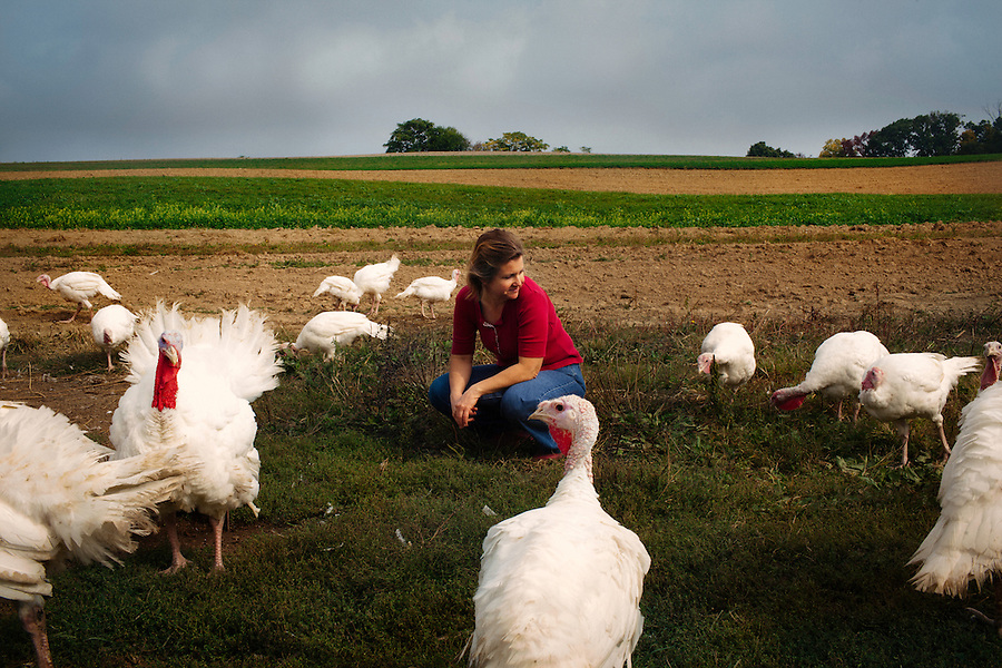 Bernville, Pennsylvania, October 24, 2014 - A portrait of Lena Schaeffer, owner of Dove Song Dairy in Berks County with her turkeys. Dove Song is an organic, family-run goat creamery employing over 200 Nubian, La Mancha and Alpine goats. The goats are pastured year around and fed a diet of barley, spelt and sunflower seeds from on the farm mixed with flax, kelp and minerals. The family has a country store on premises where they sell their yogurt, cheeses, duck and chicken eggs, milk and hand made soaps along with items from other local farmers.