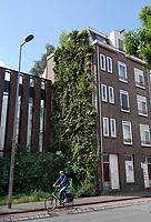Nederland - Amsterdam - Juli 2020.  Verticaal groen in de Van Diemenstraat.  In de tuin zijn 60 verschillende soorten planten verwerkt. De Van Diemenstraat is een drukke verkeersader in Amsterdam. Met de verticale tuin wil Woningstichting Eigen Haard bijdragen aan het vergroenen van bestaande gebouwen. Zowel de bewoners als het milieu profiteren hiervan. De planten zetten koolstofdioxide om in zuurstof en houden schadelijk fijn stof vast. Daarnaast werkt de groene gevel isolerend en verlaagd het de omgevingstemperatuur in de stad. Het ontwerp voor de verticale tuin is door kunstenares C.A. Wertheim gemaakt.   Foto ANP / Hollandse Hoogte / Berlinda van Dam