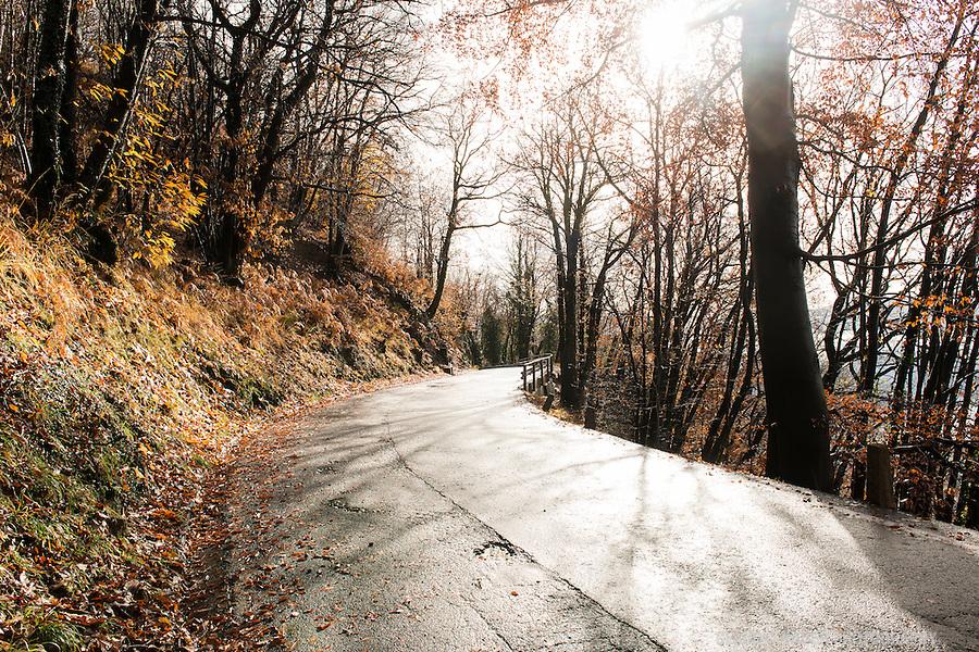 Passes, Malcantone, Ticino, Road, Autumn