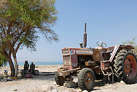 JORDAN , failed farming due to water shortage in Jordan valley and at Dead Sea, abandoned Volvo BM 650 tractor / JORDANIEN , Wassermangel  im Jordan Tal und am Toten Meer, kaputter Traktor