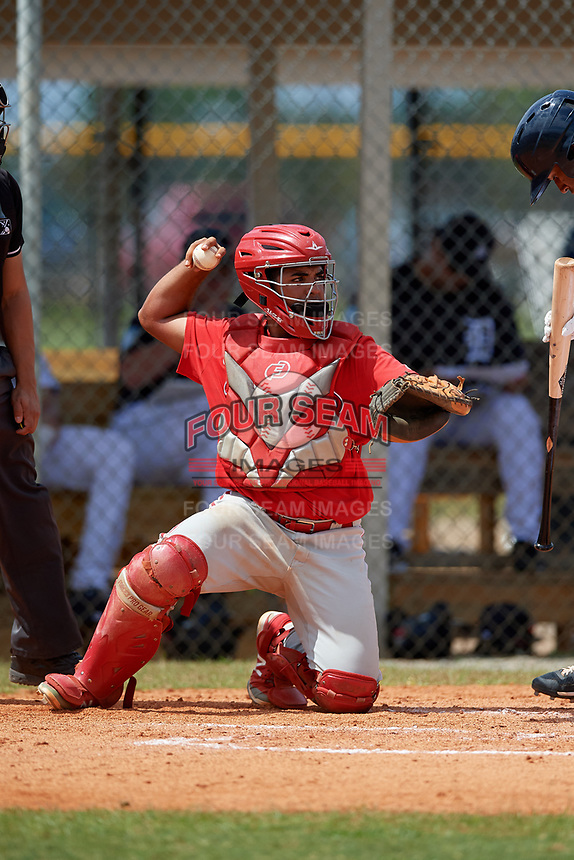 Philadelphia Phillies catcher Freddy Francisco (13) during an Instructional League game against the Detroit Tigers on September 19, 2019 at Tigertown in Lakeland, Florida.  (Mike Janes/Four Seam Images)