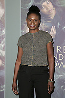 LOS ANGELES, CA - FEBRUARY 05: Adina Porter at the Here And Now Los Angeles Premiere at the  DGA Lot on February 5, 2018 in Los Angeles, California. <br /> CAP/MPI/DE<br /> &copy;DE//MPI/Capital Pictures