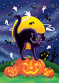 Janet, REALISTIC ANIMALS, Halloween, paintings, Spooky Cat 1(USJS102,#A#)