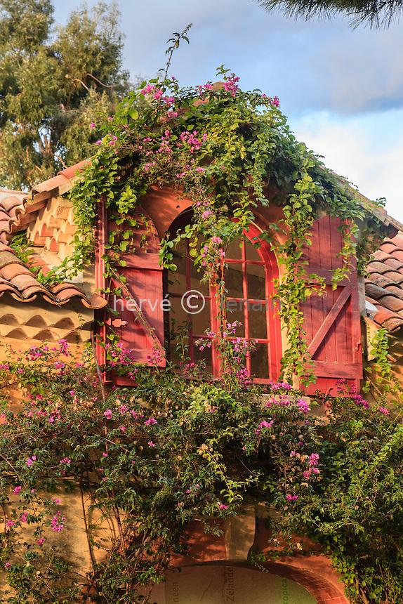 Domaine du Rayol en novembre : la ferme une bougainvillée (Bougainvillea glabra) en fleurs sur la façade.