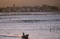 Europe/France/Languedoc-Roussillon/34/Hérault/Bassin de Thau/Bouzigues: Aube sur le bassin - Vue des parc à huîtres et ville de Bouzigues à l'arrère plan