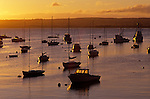 Sunrise and sailboats and fishng boats in Monterey Bay California USA
