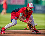 28 April 2017: Washington Nationals infielder Wilmer Difo warms up prior to a game against the New York Mets at Nationals Park in Washington, DC. The Mets defeated the Nationals 7-5 to take the first game of their 3-game weekend series. Mandatory Credit: Ed Wolfstein Photo *** RAW (NEF) Image File Available ***