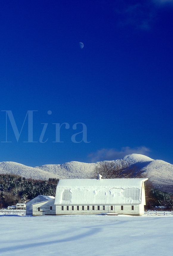 AJ5962, barn, mountain, winter scene, moon, snow, Mt. Mansfield, Vermont, A large white barn on a snow covered farm with Mount Mansfield in the distance under the moon against a clear blue sky in winter in Underhill in Chittenden County in the state of Vermont.