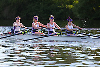 Race: 84  Event: J16 4+<br /> Crew: 282  Club: Glasgow Acad<br /> <br /> Henley Women's Regatta 2018<br /> Friday<br /> <br /> To purchase this photo, or to see pricing information for Prints and Downloads, click the blue 'Add to Cart' button at the top-right of the page.