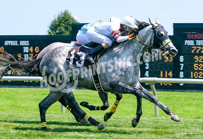 Big Platinum winning at Delaware Park on 7/10/17