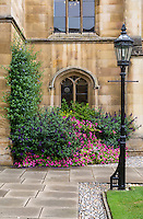UK, England, Cambridge.  Corpus Cristi College, Corner of the Courtyard.