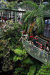 Visitors overlooking the Rainforests of the World exhibit at California Academy of Sciences, Golden Gate Park, San Francisco, California