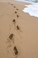 Footprints in the surf at Bluff Beach, Bocas del Toro; Colon Island; Panama
