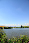 Israel, Upper Galilee, Ein Gonen in the Hula valley