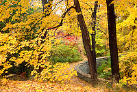 Curved flagstone retaining wall with autumn leaves on River Road.  Minneapolis Minnesota USA