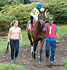 Pearl Turn before The Pollys Jet Stakes at Delaware Park on 10/5/13