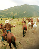 USA, Montana, wrangler letting horses out to pasture, Gallatin National Forest, Emigrant